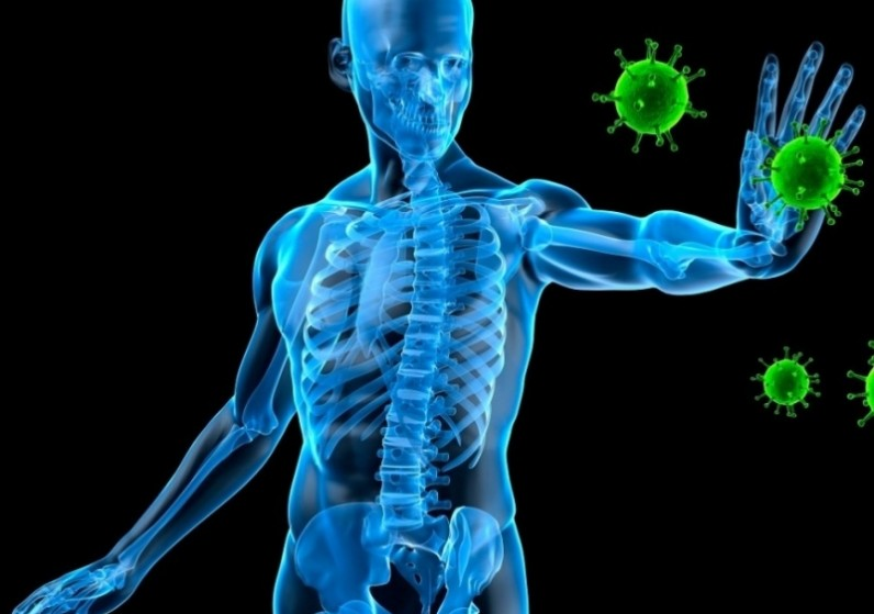 Hogyan befolyásolja a testmozgás az immunitást?